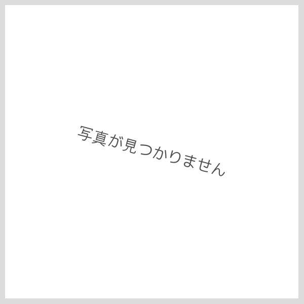 画像1: 月の桂 本醸造 【1800ml】 (1)